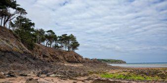 Acheter un programme neuf dans le Morbihan